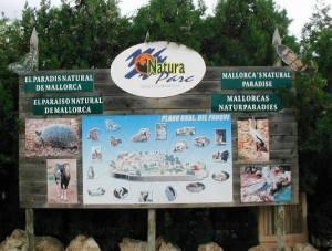 Natura Park s'encarregarà, a partir d'ara, de la recollida d'animals sense propietari.