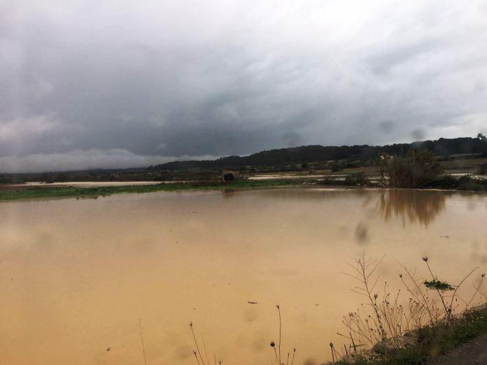 Un camp inundat a Lloret, avui matí, a només uns quilòmetres de Sineu.